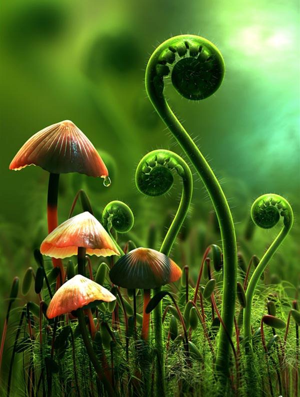 سبزترین دشت